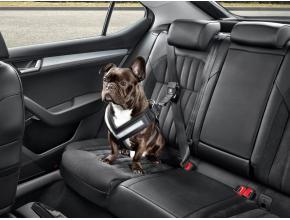 Ceinture de sécurité pour chien - M